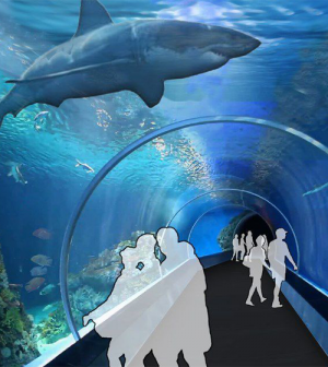 Aquarium Planned For Union Station In Downtown Stl