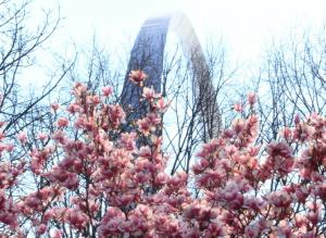 CityArchRiver Spring Into Your Park @ North Gateway Near Eads Bridge